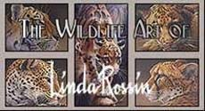 The Wildlife Art of Linda Rossin, New Yersey